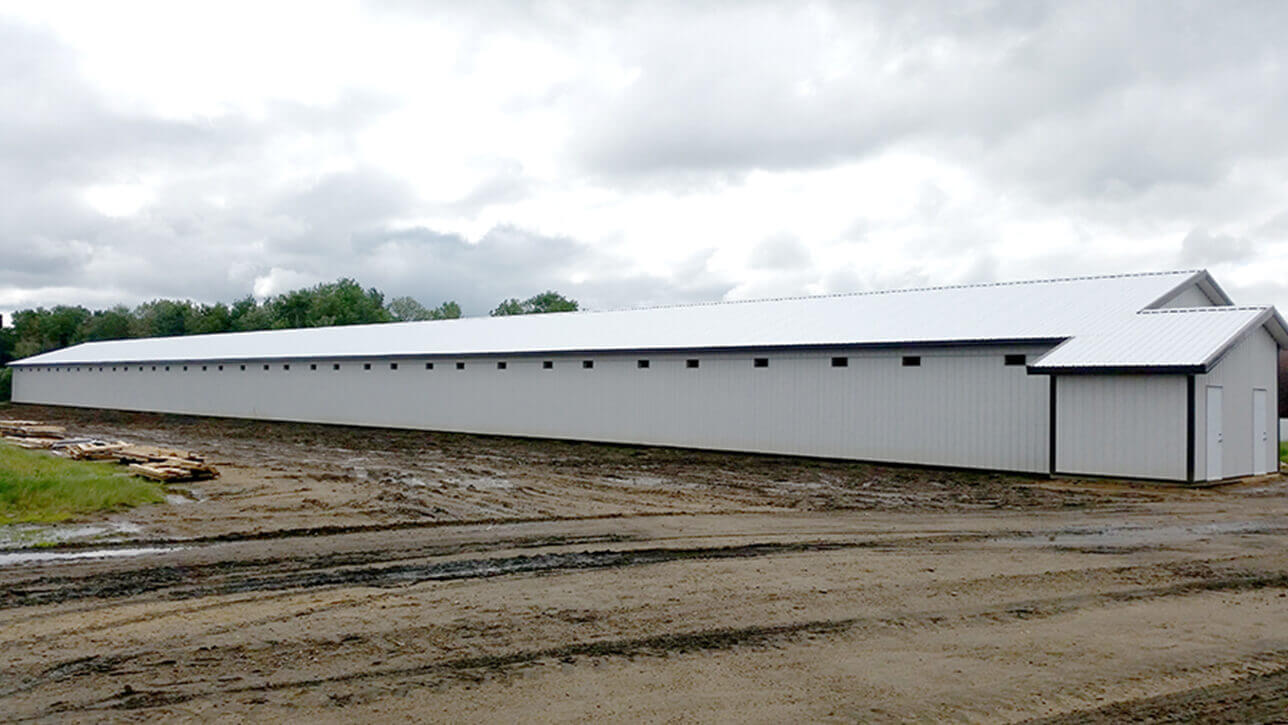 custom-building-turkey-barn-side-view-white-polak-ag-enterprises-alberta