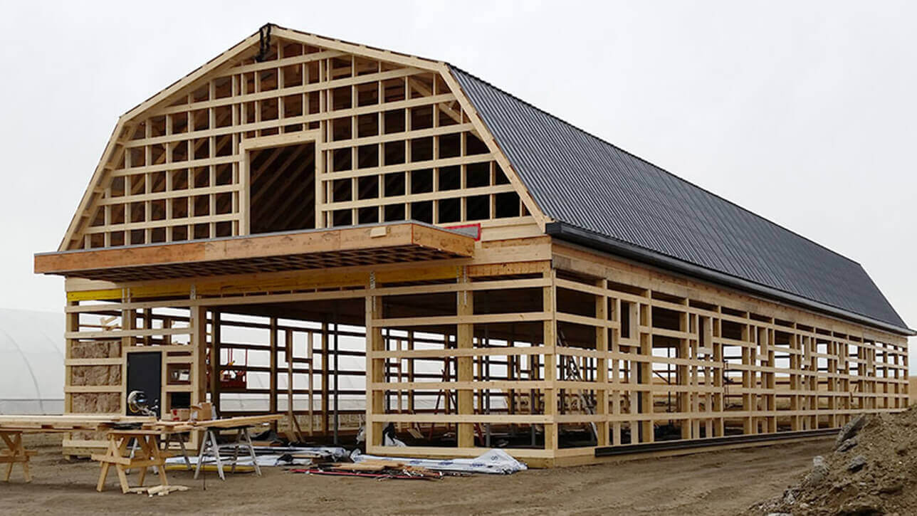 custom-building-heritage-barn-elnora-framing-alberta